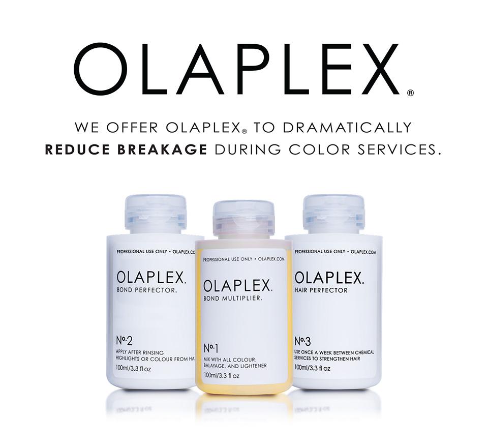 Damaged Hair…. Olaplex Repairs