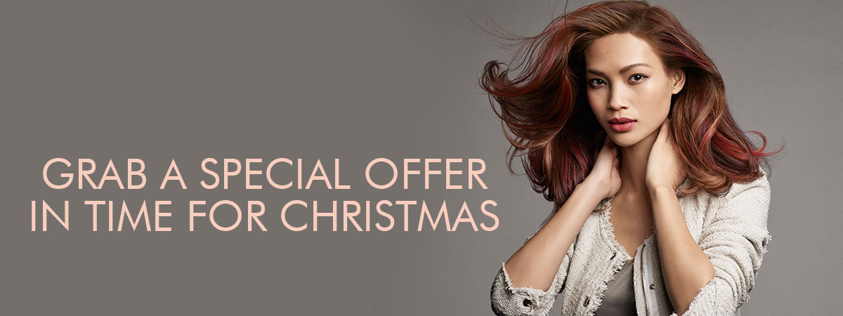 12 Days of Christmas Offer